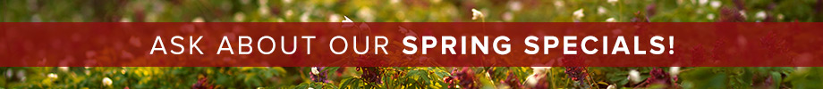 Ask about our Spring Specials!